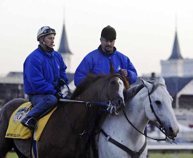 Allegations of racehorse abuse being investigated
