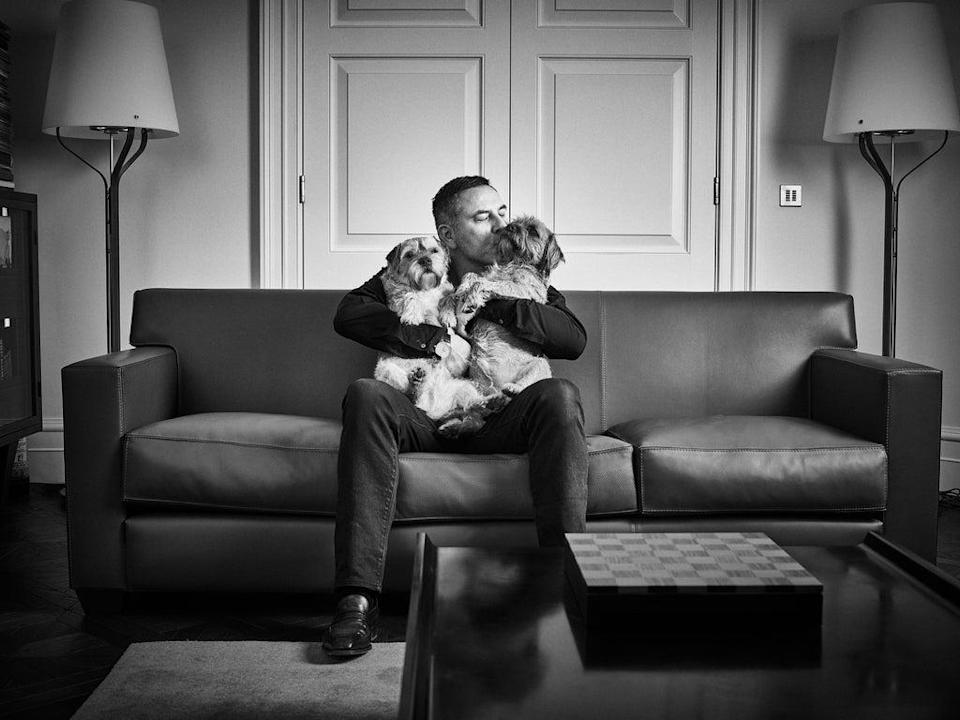 David Walliams, photographed with border terriers Bert and Ernie