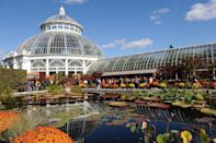"<p>The <a href=""https://www.nybg.org"" rel=""nofollow noopener"" target=""_blank"" data-ylk=""slk:New York Botanical Garden"" class=""link rapid-noclick-resp"">New York Botanical Garden </a>offers a 250-acre peaceful getaway for city dwellers in the heart of the Bronx. The Victorian-era Enid A. Haupt Conservatory allows visitors to discover indoor deserts, waterfalls, and a tropical landscape that includes the world's largest collection of indoor palm trees. One of the 50 distinct gardens, the Peggy Rockefeller Rose Garden houses more than 650 <a href=""https://www.veranda.com/outdoor-garden/g27044935/rose-color-meanings/"" rel=""nofollow noopener"" target=""_blank"" data-ylk=""slk:varieties of fragrant roses"" class=""link rapid-noclick-resp"">varieties of fragrant roses</a>.</p>"