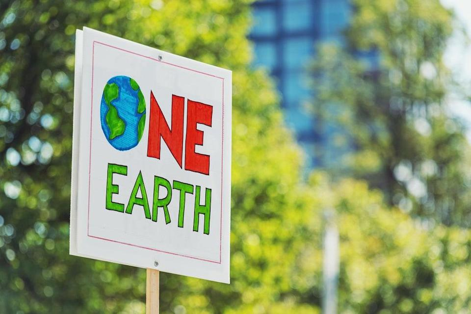 'The successful climate movement won't be radical or moderate – it will be both'  (Getty Images/iStockphoto)