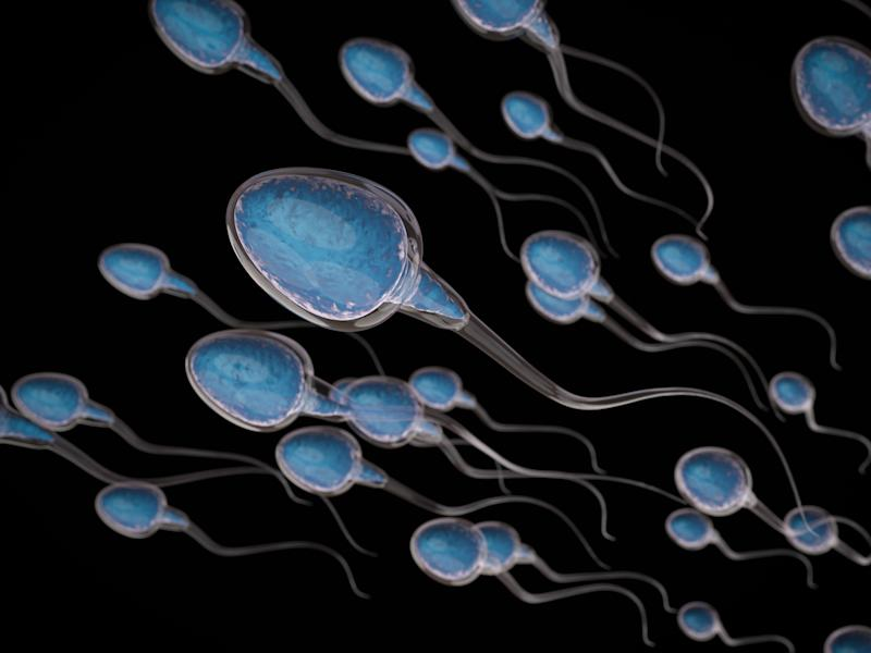 """It is entirely possible for sperm counts to be declining ... without their being a corresponding decrease in male fertility,"" says University of Sussex professor Fiona Mathews. (PhonlamaiPhoto via Getty Images)"