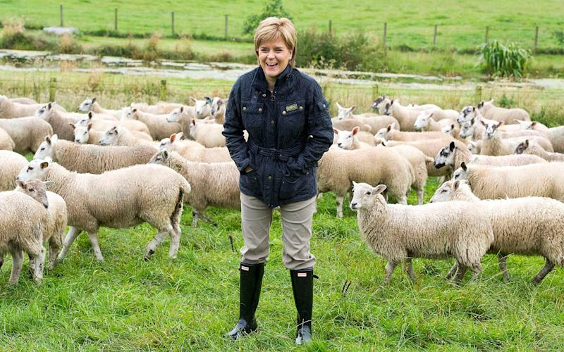 Nicola Sturgeon has demanded that all agricultural powers repatriated from Brussels come to Scotland - Credit: PA
