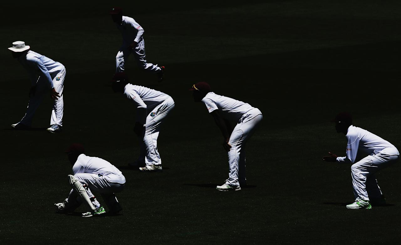 HAMILTON, NEW ZEALAND - DECEMBER 20: The West Indies slips wait for a delivery during day two of the Third Test match between New Zealand and the West Indies at Seddon Park on December 20, 2013 in Hamilton, New Zealand.  (Photo by Hannah Johnston/Getty Images)