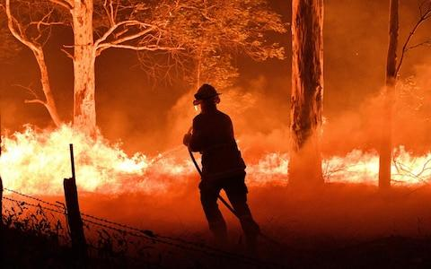 A firefighter hosing down trees and flying embers in an effort to secure nearby houses from bushfires near the town of Nowra in New South Wales - Credit: AFP