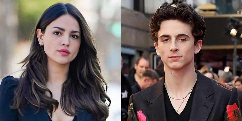 All About Eiza González, The Actress Rumored to Be Timothée Chalamet's New Girlfriend