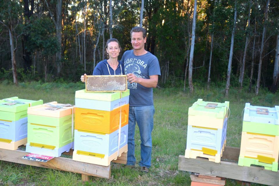 The couple turned a fascination with bees into a full-time business.