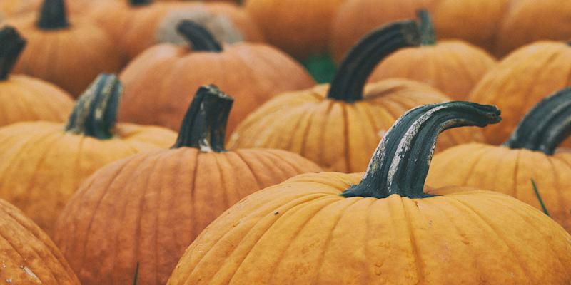 Carving the perfect pumpkin isn't scary, you just need these tools