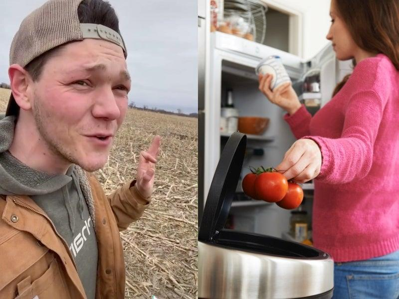 Farmer calls out expiration dates and the food industry on TikTok  (TikTok / @haydenjfox / Stock)