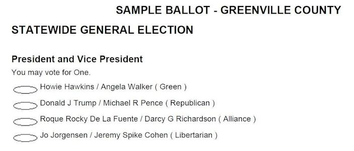 A sample ballot for general election does not include the Democratic presidential ticket of Joe Biden and Kamala Harris.