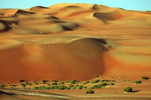 The Empty Quarter - Credit: Cristian Andriana - Fotolia