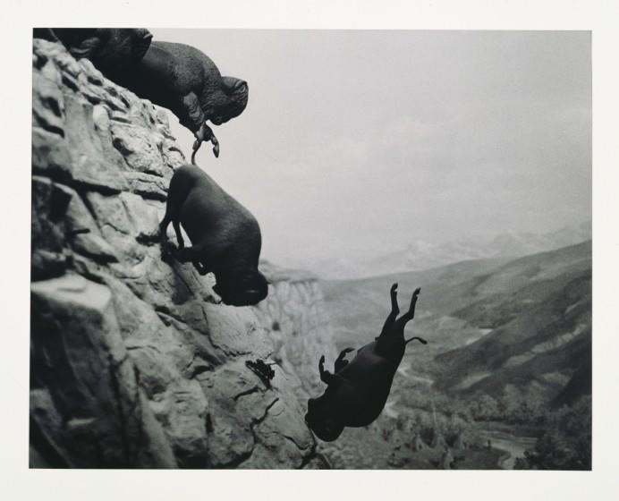 "Untitled (Falling Buffalo), 1988-89, by David Wojnarowicz, from the documentary ""Wojnarowicz."""