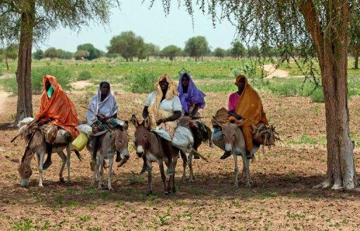 Sudanese women ride home on donkeys after a day of farming near Gereida, South Darfur, on July 25, 2012. A World Bank report has estimated that more women between the ages of 15 and 44 die in rapes and domestic violence than from cancer, car accidents, war and malaria combined