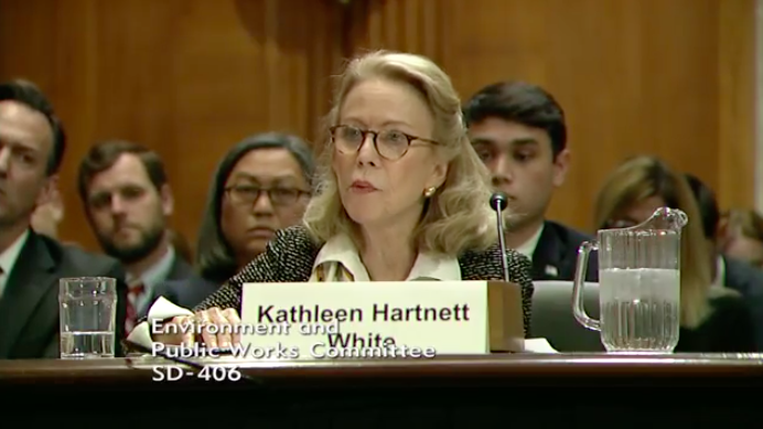 A screenshot from the live-streamed hearing, where Kathleen Hartnett White testified. (Senate EPW)