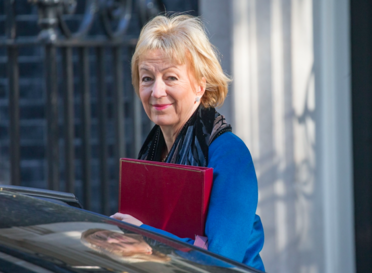 Andrea Leadsom will attend Cabinet as Leader of the House of Commons (Rex)