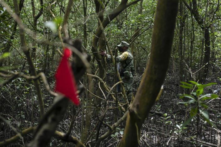 A soldier of the Mexican Army stands next to a flag marking the site of a possible clandestine grave in Puquita, a tropical mangrove island near Alvarado in the Gulf coast state of Veracruz, Mexico, Thursday, Feb. 18, 2021. Investigators from the National Search Commission found three pits with human remains and plastic bags inside. The number of bodies there has not yet been determined. (AP Photo/Felix Marquez)