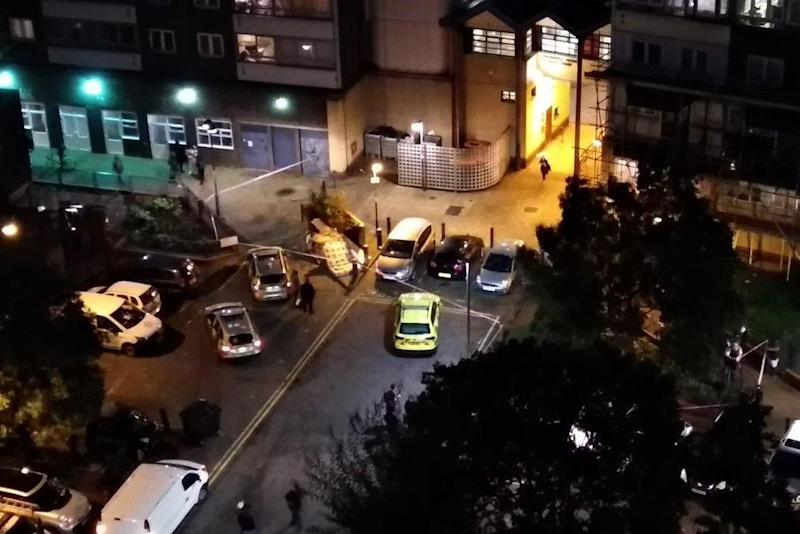Police were called to reports of men fighting in Battersea (Peter Banfalvi)