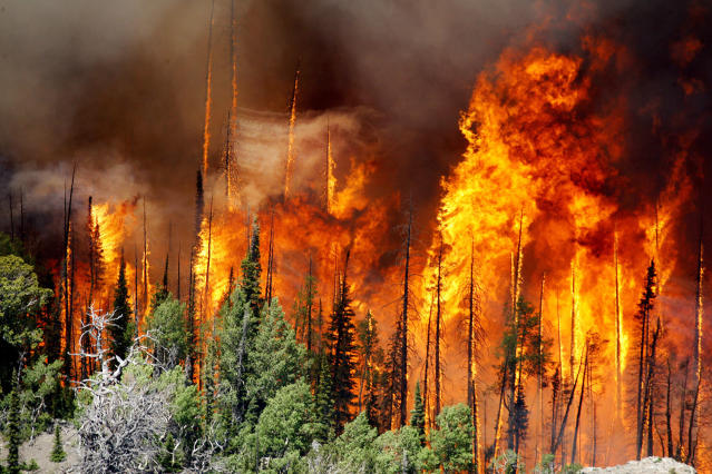 <p>The Brian Head Fire continues to grow and has burned more than 27,700 acres, June 23, 2017 in Brian Head, Utah. A wildfire menacing a southern Utah ski town for nearly a week flared again, doubling in size for the second night in a row and torching more homes after residents fled the flames, officials said Friday. (Stuart Johnson/The Deseret News via AP) </p>