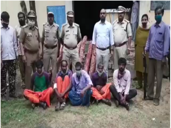 Andhra Pradesh police and Forest Department Officials with red sandars and accused. (Photo/ANI)