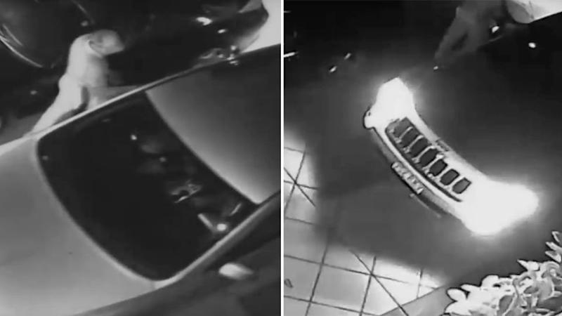 The thugs stole a handbag from inside the home and fled using the family's Jeep. Photo: 7 News