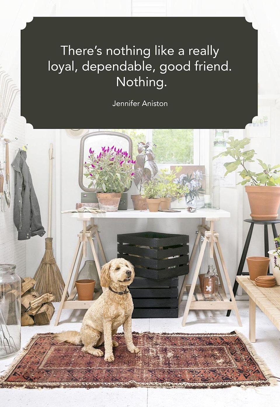 "<p>""There's nothing like a really loyal, dependable, good friend. Nothing.""</p>"