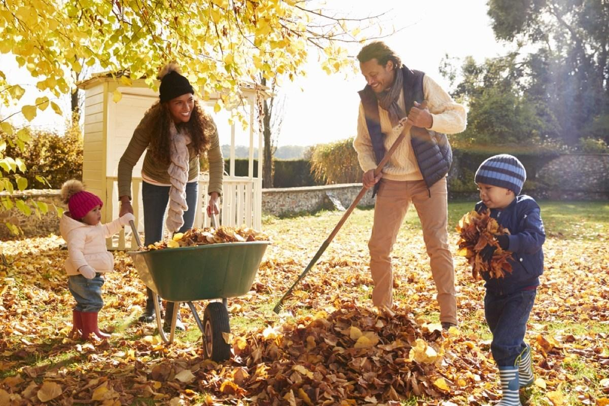 """With winter on the horizon, many home gardeners are spending their days raking leaves and trimming back branches, hoping they can keep their plants healthy and protected before the snow starts to fall. However, it takes more than just a few passes with the leaf blower to fully <a href=""""https://bestlifeonline.com/fall-home-upgrades/?utm_source=yahoo-news&utm_medium=feed&utm_campaign=yahoo-feed"""">prep your yard before winter</a>. If you want a <a href=""""https://bestlifeonline.com/perfect-lawn-tips/?utm_source=yahoo-news&utm_medium=feed&utm_campaign=yahoo-feed"""" target=""""_blank"""">lush lawn</a> and a healthy garden come springtime, here's everything you need to do before it gets blustery out there.      <div class=""""number-head-mod number-head-mod-standalone"""">         <h2 class=""""header-mod"""">                     <div class=""""number"""">1</div>             <div class=""""title"""">Skip your fall cleanup.</div>                     </h2>     </div>"""