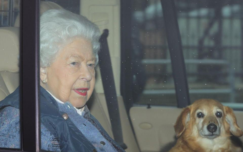 The Queen pictured with one of her corgis - Rebecca English
