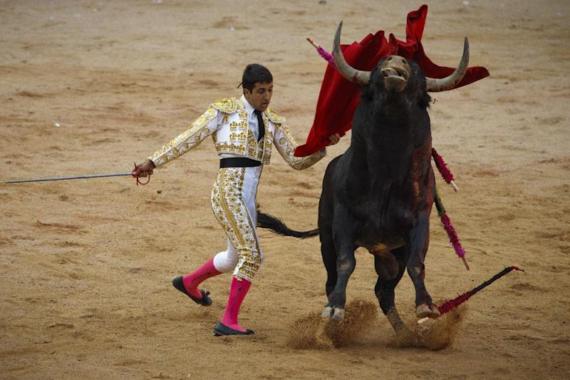 Spanish bullfighter Javier Castano performs with a Miura's ranch fighting bull during a bullfight of the San Fermin festival, in Pamplona, Spain, Sunday, July 8, 2012 in Pamplona, Spain. (AP Photo/Daniel Ochoa de Olza)