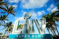 The San Francisco 49ers will face the Kansas City Chiefs in the 54th playing of the Super Bowl in Miami (AFP Photo/Cliff Hawkins)