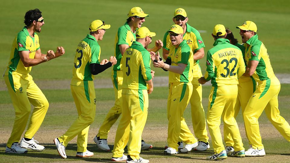 The Aussie cricket side is pictured here celebrating a wicket against England.