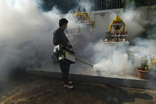 First Thai babies diagnosed with Zika-linked microcephaly: ministry