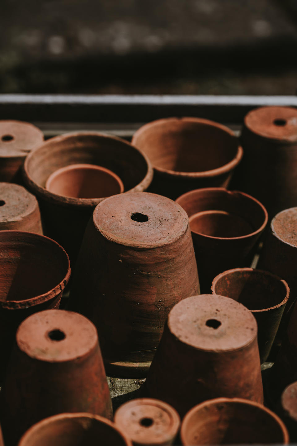 winter garden jobs: terracotta plant pots