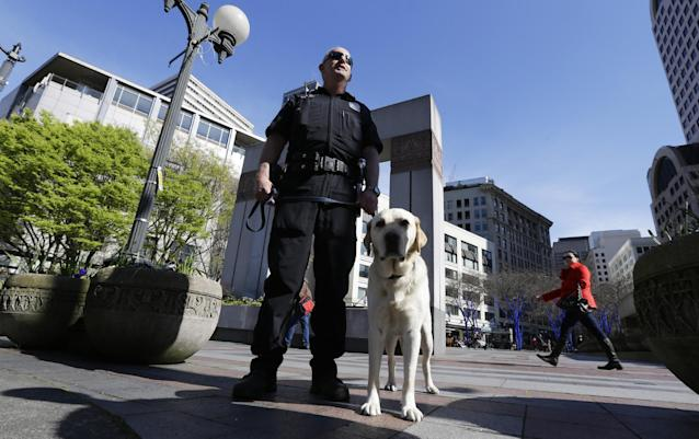 "Seattle Police K9 officer Craig Williamson stands with his explosives detection dog, ""Dennis"" as he patrols downtown Seattle, Monday, April 15, 2013, in reaction to explosions at the Boston Marathon finish line earlier in the day. A Seattle Police blog posting said that although there was no indication of a direct threat to Seattle, officers would be increasing patrols and activity around the city. (AP Photo/Ted S. Warren)"