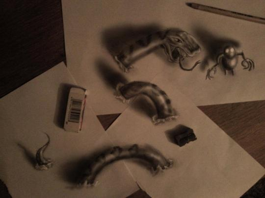 Stunning: Artist Ramon spends up to 20 hours on some of his more intricate 3D drawings (Ramon Bruin)