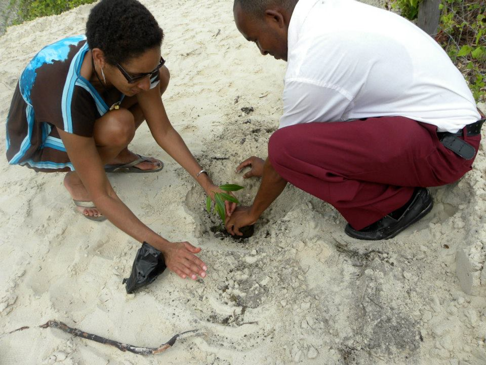 An adult demonstrates research to a youth crouching down in sand