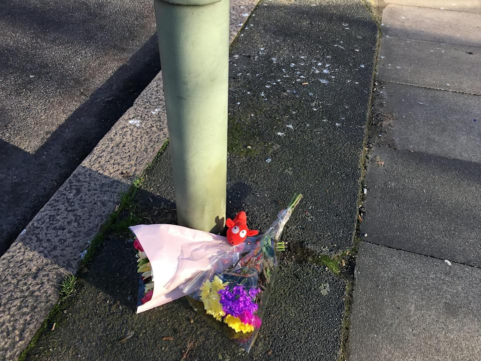 Nicole Newman was killed, and her son Luciano Newman Bianco was critically injured, when they were hit by a car in Croydon Road, Penge, on Sunday. (SWNS)