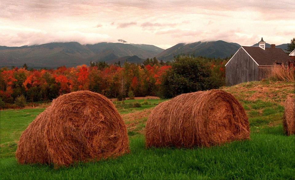 <p>Not too far away from Franconia is Sugar Hill, which boasts epic views of fall foliage. There are so many activities in such a teeny-tiny town, including a visit to Sugar Hill Historical Museum or Harman's Cheese & Country Store. <br></p>