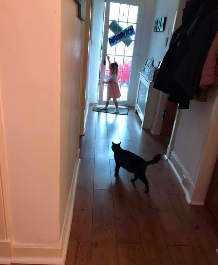 Thanks fur coming: George leaving a child's birthday party. (Facebook)