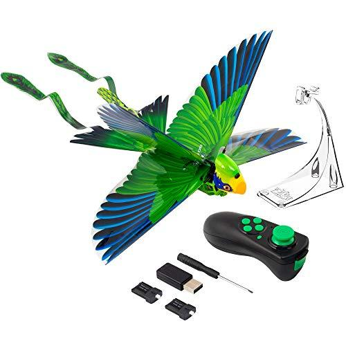 Zing Go Go Bird (Amazon / Amazon)