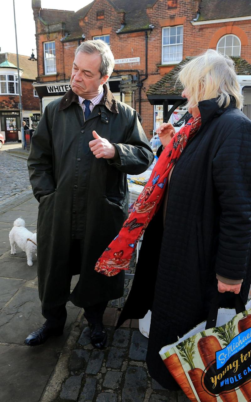 Ukip Leader Nigel Farage during a walkabout in Sandwich, Kent,Feb 2015 - Credit: Gareth Fuller/PA