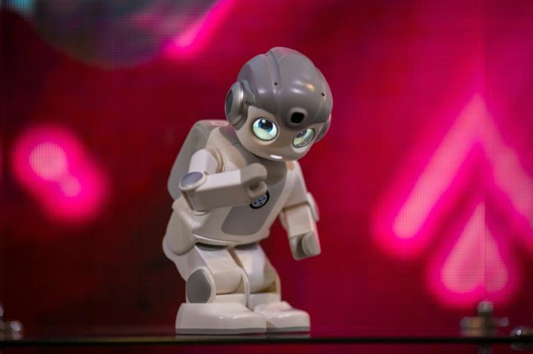 Robots which can be used for education, elderly care, security and retail stores are expected to be part of the 2020 Consumer Electronics Show opening January 7 in Las Vegas