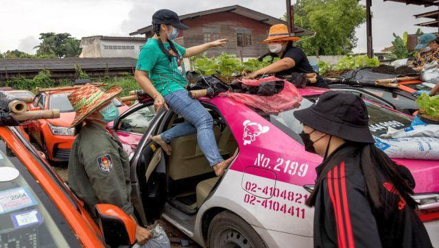The taxi trade in Bangkok normally relies heavily on tourism but tight restrictions on entering the country means it has almost come to a standstill. Growing vegetables on top of the roofs won't damage the taxis since most of them have already been damaged beyond repair. The engines are broken, tyres are flat. AFP
