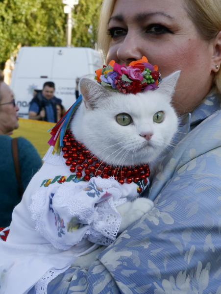 "A woman holds her cat as she attends a rally marking Defense of the Homeland Day in center Kyiv, Ukraine, Monday, Oct. 14, 2019. Some 15,000 far-right and nationalist activists protested in the Ukrainian capital, chanting ""Glory to Ukraine"" and waving yellow and blue flags. President Volodymyr Zelenskiy urged participants to avoid violence and warned of potential ""provocations"" from those who want to stoke chaos. (AP Photo/Efrem Lukatsky)"