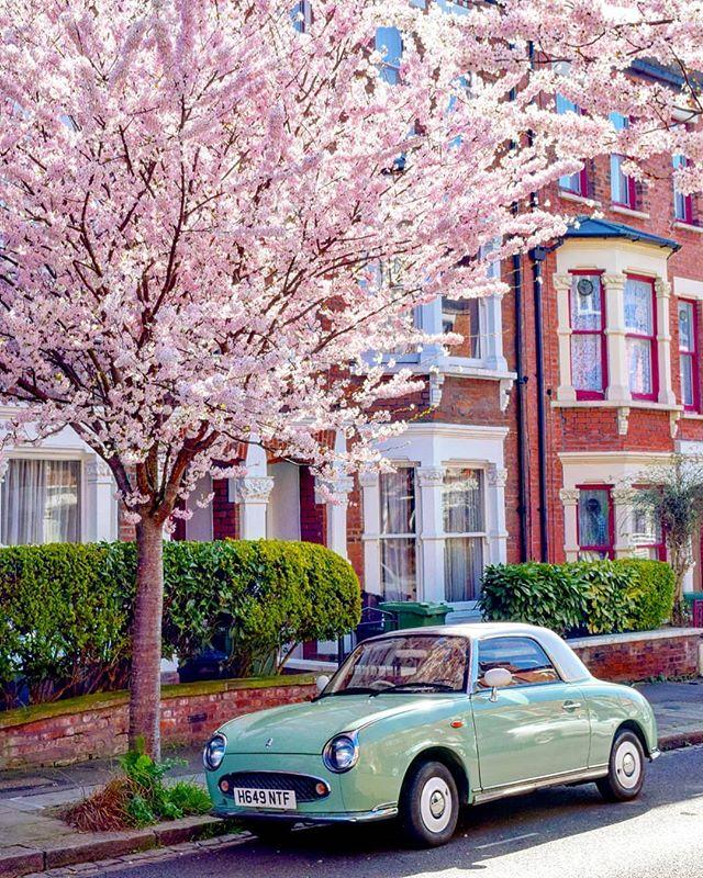 """<p>The cherry blossom is in full bloom on the streets of London. We love this shot, captured by Monsur Photography in the spring sunshine earlier this week.</p><p><a href=""""https://www.instagram.com/p/B9Rq9nzl43H/?utm_source=ig_web_copy_link"""">See the original post on Instagram</a></p>"""