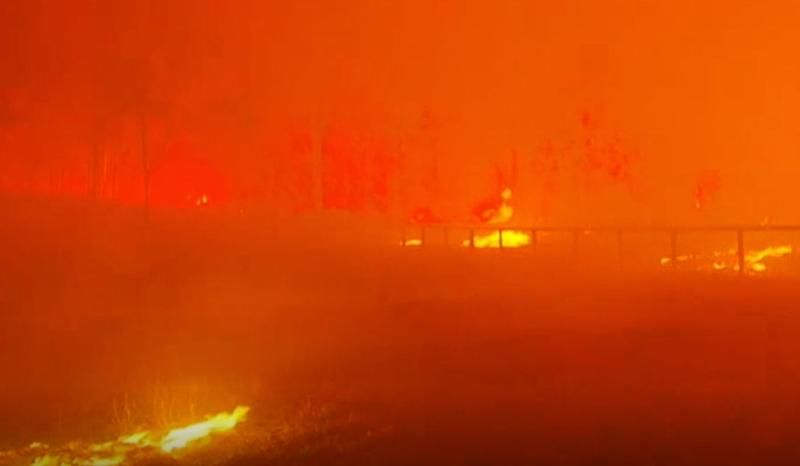 Bushfires are seen turning the sky orange as they destroy parts of Rappville.