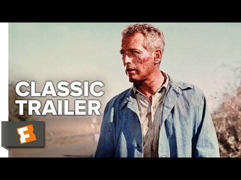 """<p>The 1967 classic starring Paul Newman and George Kennedy centers around Luke, a petty criminal who becomes a prisoner in a Florida prison camp and refuses to submit to the authorities and the system.</p><p><a class=""""link rapid-noclick-resp"""" href=""""https://www.netflix.com/title/397323"""" rel=""""nofollow noopener"""" target=""""_blank"""" data-ylk=""""slk:Watch Now"""">Watch Now</a></p><p><a href=""""https://www.youtube.com/watch?v=ofxtDrRVQY4"""" rel=""""nofollow noopener"""" target=""""_blank"""" data-ylk=""""slk:See the original post on Youtube"""" class=""""link rapid-noclick-resp"""">See the original post on Youtube</a></p>"""