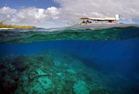 A tourist boat floats above an area called the 'Coral Gardens' located off Lady Elliot Island and north-east from the town of Bundaberg in Queensland, Australia, June 10, 2015. REUTERS/David Gray/File Photo