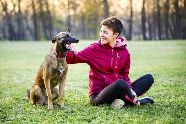 Dogs want to rescue owners in need finds new study