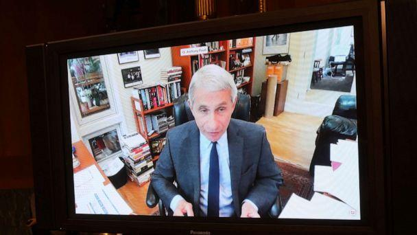 PHOTO: Dr. Anthony Fauci, director of the National Institute of Allergy and Infectious Diseases speaks remotely during a virtual Senate Committee for Health, Education, Labor, and Pensions hearing, May 12, 2020 on Capitol Hill in Washington. (Win Mcnamee/AP)
