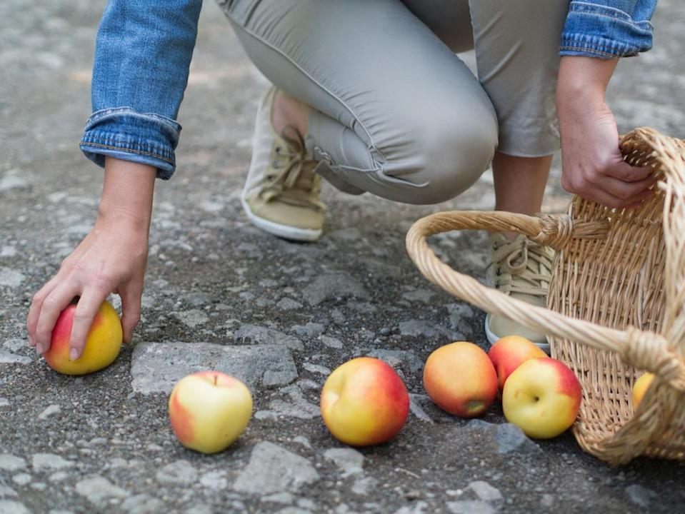 apples spilled from the basket on the ground