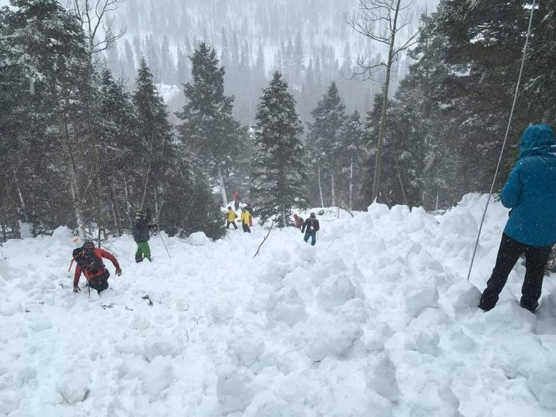 Rescue workers looking for bodies after an avalanche in the Taos Ski Valley in New Mexico on March 13, 2019. (Courtesy of Christof Brownell)